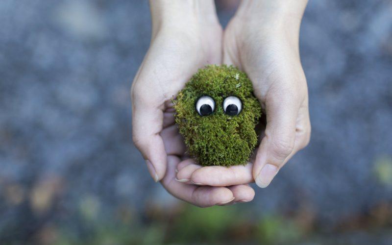 Neid-grünes-Monster