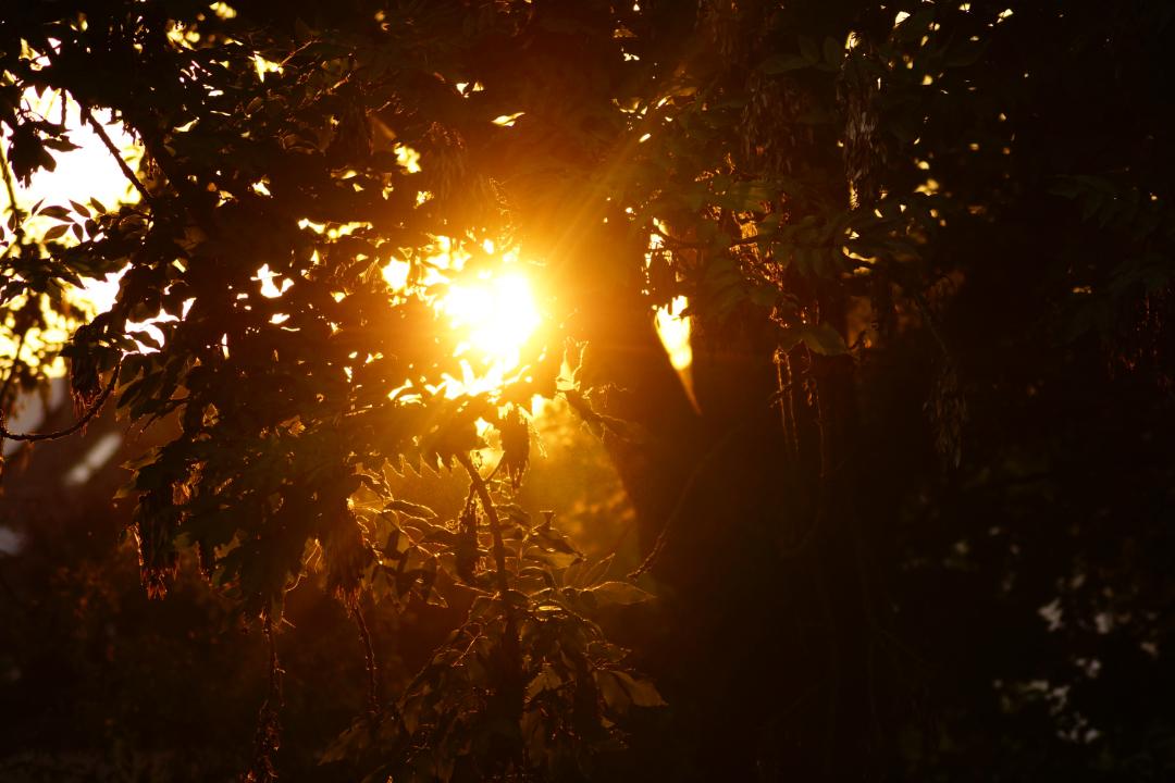 Alles neu macht der Oktober – Veränderungen auf Gedankenkost